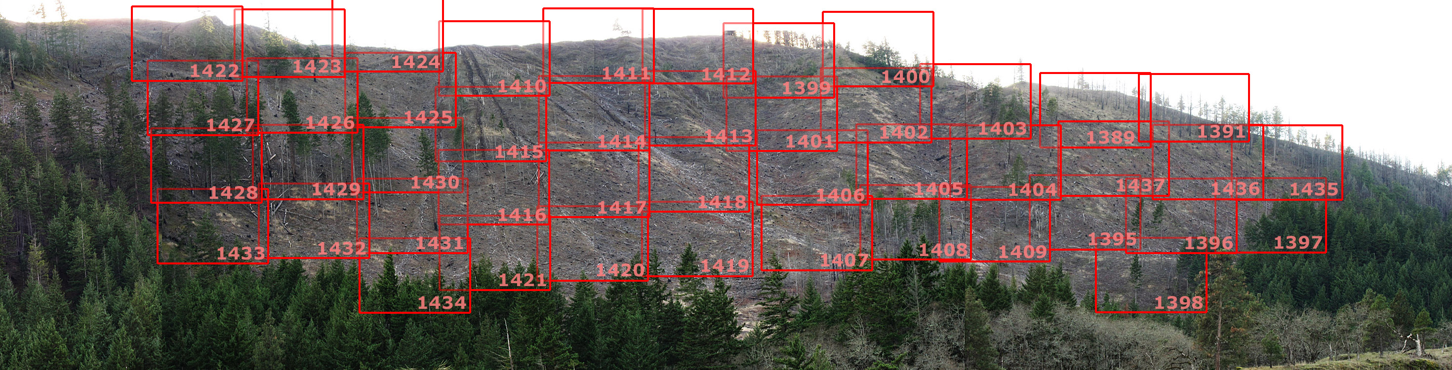 Anatomy of a Clearcut:  Map Key